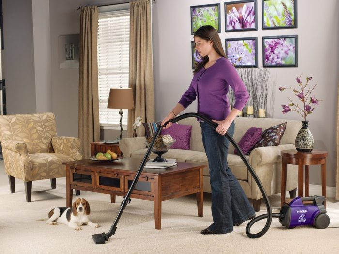 Eureka Mighty Mite Pet Lover Vacuum on Floor